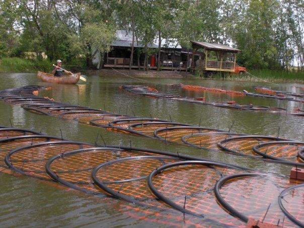 Pond Loop & Canoes 3